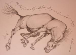 Angsty Horse-PhotoqouteWC